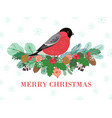 bird winter banner christmas forest bullfinch on vector image vector image