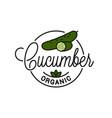 cucumber vegetable logo round linear slice vector image