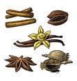 Set of spices Anise cinnamon cocoa vanilla vector image vector image