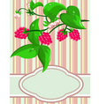sprig raspberry vector image vector image