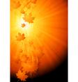 Bright autumn wavy backdrop vector image vector image