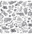 hand drawn herbs and spices background or vector image