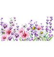 lavender and summer colorful flowers watercolor vector image vector image