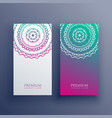 mandala colorful card banner design vector image vector image