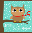 merry christmas owl bird wearing red scarf cute vector image