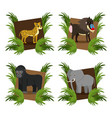 set of wild african animals vector image