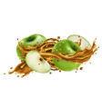 splash fruit juice and fresh green apples vector image