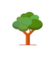 green tree icon in flat style vector image