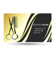 business card for beauty salon and hairdresser vector image vector image