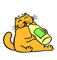 Cute orange cat drinks lemonade isolated