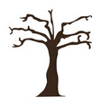 dry tree isolated vector image