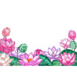 lotus background hand drawn floral banner with vector image vector image
