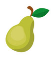 pear fresh fruit icon vector image