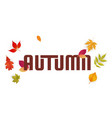 autumn falling leaves white background imag vector image vector image