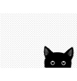 Black Cat Dots Background vector image vector image