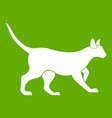 cat icon green vector image