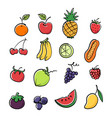 colorful graphic fruit image vector image