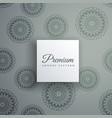 elegant decorative ethnic pattern background vector image vector image