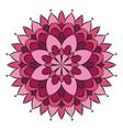pink colored circular round floral mandala vector image vector image