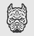 Pitbull Head Logo Mascot Emblem vector image vector image