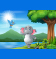 scene with elephant and blue bird having fun at na vector image vector image