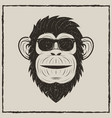 monkey in sunglasses grunge t-shirt vector image