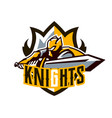 a colorful logo a sticker an emblem a knight is vector image vector image