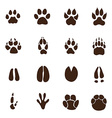 Animals footprints vector image vector image