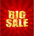 BIG SALE background sample vector image vector image