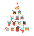 cats christmas tree vector image vector image