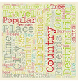 Christmas Article 46 text background wordcloud vector image vector image