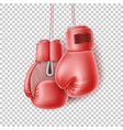red pair boxing glove on lace realistic vector image vector image