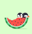 watermelon bite with penguin vector image