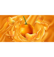 whole and sliced mandarins in fruit juice vector image vector image
