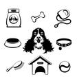 Dog icons set vector image