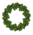 holiday christmas wreath vector image vector image