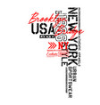 new york brooklyn sport design typography vector image vector image