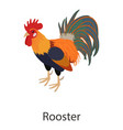 rooster icon isometric style vector image