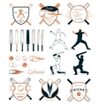 set badges cricket vector image vector image
