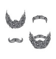 beard set vector image