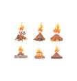 bonfire collection burning wooden logs campfire vector image vector image