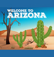 cactus plants in arizona state vector image vector image