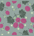 gooseberry seamless pattern leaves flowers vector image vector image