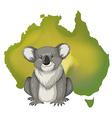 Koala bear and Australian map vector image
