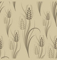 seamless pattern with brown wheat spikelets vector image
