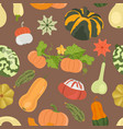 variety of pumpkins flat design seamless pattern vector image vector image