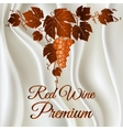 Wine grapes vector image