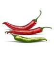 Red chili pepper isolated on white vector image