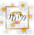 chamomile flower spring background with gold frame vector image vector image
