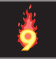 flaming number nine vector image